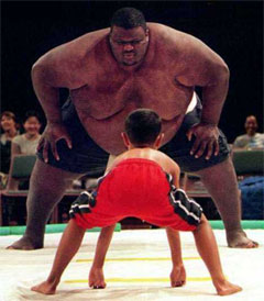 David-and-Goliath-sumos